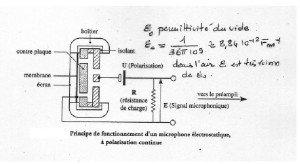 1 Electrostatique